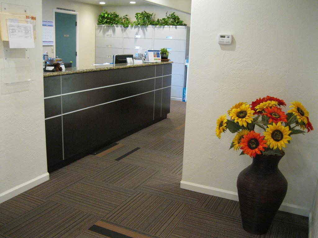 Front office and hallway with vase and flowers | Dentist Vallejo CA